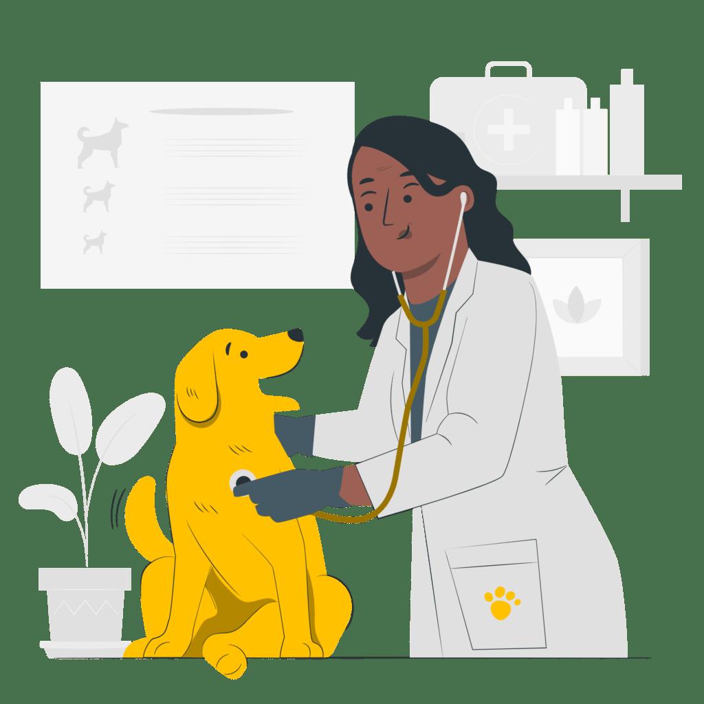 veterinarios especializados en bogotá